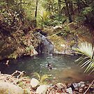 Hot Springs,  Great Barrier Island.........! by Roy  Massicks