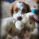I Wuv My Wabbit by cullodenmist