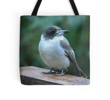 Baby Butcherbird Tote Bag