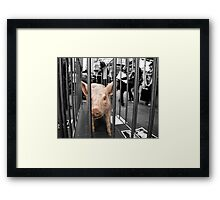Don't turn a blind eye Framed Print