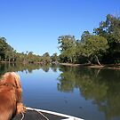 Tallebudgera Creek by Boat by aussiebushstick