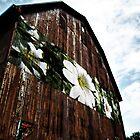 Barn Flowers by BonnieToll