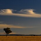 Liverpool Plains by Werner Padarin