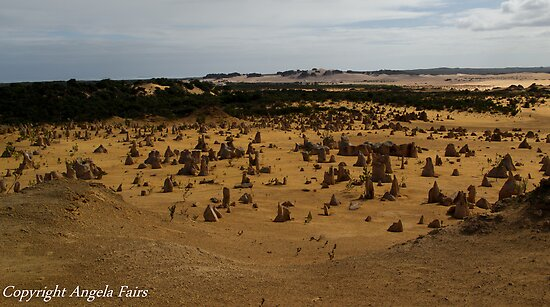 Pinnacles Desert by Angie66