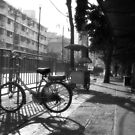 Bicycle and Sunshine by vanyahaheights