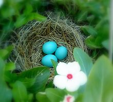 Robin Eggs and Vinca  by CrystalFanning