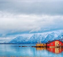 Typical red house on coast  by michalbellan