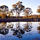 Sunset On A Pond - near Urunga, NSW by kenhay
