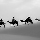 Camels Crossing  by KerryPurnell