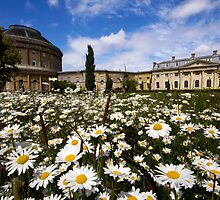 Ickworth House by Darren Burroughs
