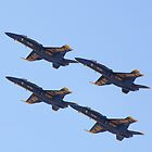 Baltimore Blue Angels 2 by Rob Diffenderfer