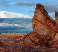Valley of Fire and the Storm by Vivian Christopher