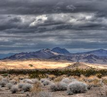 A Desert Storm by Vivian Christopher