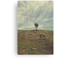 The Little Bit of my Heart That's Left Canvas Print