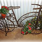 Bicycle turned into Garden Bike by EdsMum
