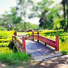 Happy Little Bridge by vanyahaheights