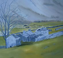Across the Dales by andy davis