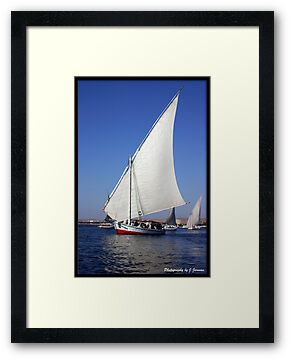 Felucca on the Nile  by Jonathan  Jarman