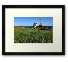 A Nice Spot on a Sunny Day Framed Print