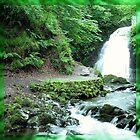 glenoe waterfall by tomstroud