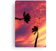 6:33 PM Hawaii Time Canvas Print