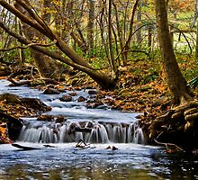 Blue Ridge Brook by Lightengr