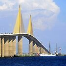 Eagle under the Skyway by David Lee Thompson