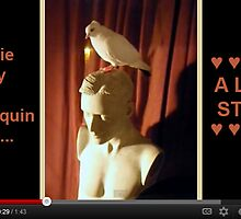 Birdie Boy and Mannequin Man - A Love Story by Jaeda DeWalt