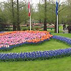 Glory of Europe - Keukenhof Gardens by MidnightMelody