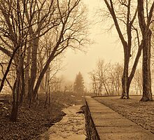 The park 2 by Richard Fortier