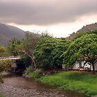 Puerto Vallarta - Rainy Season  by Heather  Hess