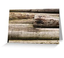 Discarded old logs Greeting Card