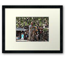 Island Of The River Cuale - Isla Del Rio Cuale Framed Print