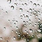 Rain by Jeananne  Martin