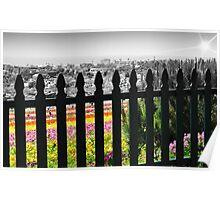 Flower Fields II Poster