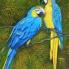 Painted Parrots by gregottlinger