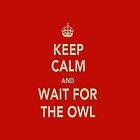 Keep Calm & Wait For The Owl by NooriiElBeh
