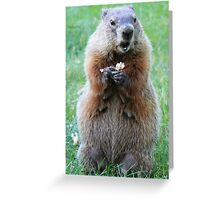 She did WHAT??? Greeting Card