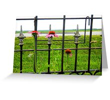 Coneflowers Against the Fence Greeting Card