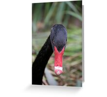 Black Swan Portrait Greeting Card