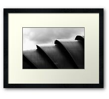tHE aRMADILLO Framed Print