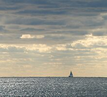 Sailboat on turbulent waves by Arie Koene