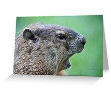 OMG I can't believe you just caught me! Greeting Card