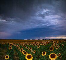 A Chance Of Rain by John  De Bord Photography