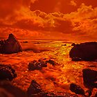 Liquid Fire 3 -Infra Red Beach by rennaisance