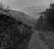 Harrison Stickle from above Elterwater Quarry by rennaisance