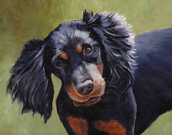 Gordon Setter by Charlotte Yealey