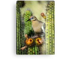 Nature's Nectar  Metal Print