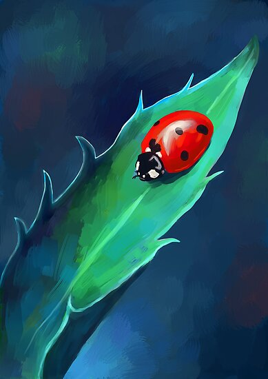 Ladybug by freeminds