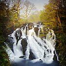 Swallow Falls by Ben Ryan